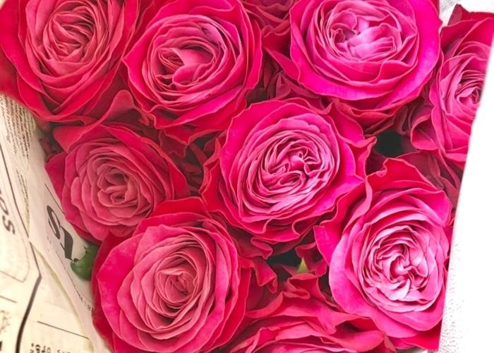 ロゼット咲きにフリル咲き!バラには色んな形の咲き方があるって知ってた??のトップ画像