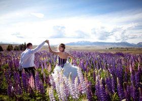 """ニュージーランドといえば広大な自然に、雄大に広がるアルプス山脈。旅行でもウェディングでも一度は訪れたい人が多い""""テカポ湖""""そこに小さく佇むのが『善き羊飼いの教会』。一歩足を踏み入れると、そこはおとぎ話の入り口。"""