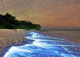 インド洋に浮かぶ、1200もの島から成り立つモルディブは「世界の首飾り」と呼ばれる美しい場所です。ハネムーンにも人気のふたつの島をご紹介♡