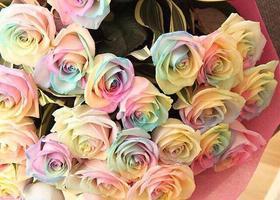 花言葉は奇跡♡虹色の花びらのバラ「レインボーローズ」の作り方をお教えします*