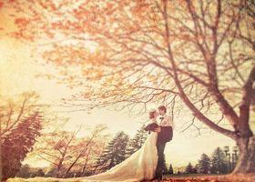 この秋結婚するカップルにぴったり♩イチョウの葉も、もみじも、もうオレンジ色に色づいてきましたね♡ロケーションフォトの絶好のチャンスです!